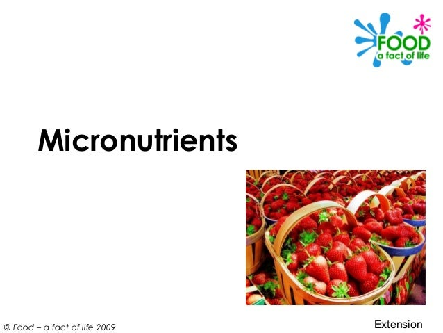 © Food – a fact of life 2009 Micronutrients Extension