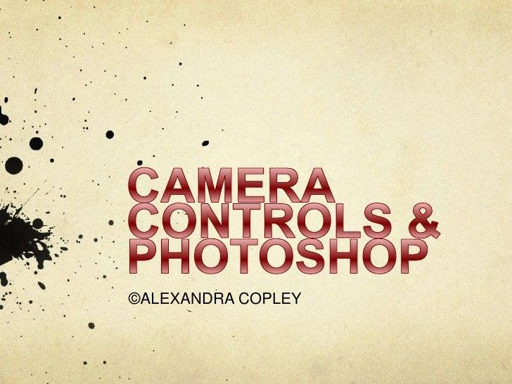 Camera Controls And Photoshop