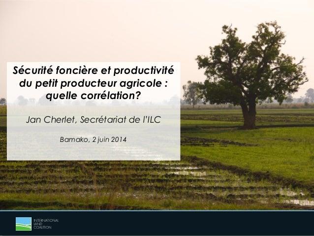 Sécurité foncière et productivité du petit producteur agricole : quelle corrélation? Jan Cherlet, Secrétariat de l'ILC Bam...