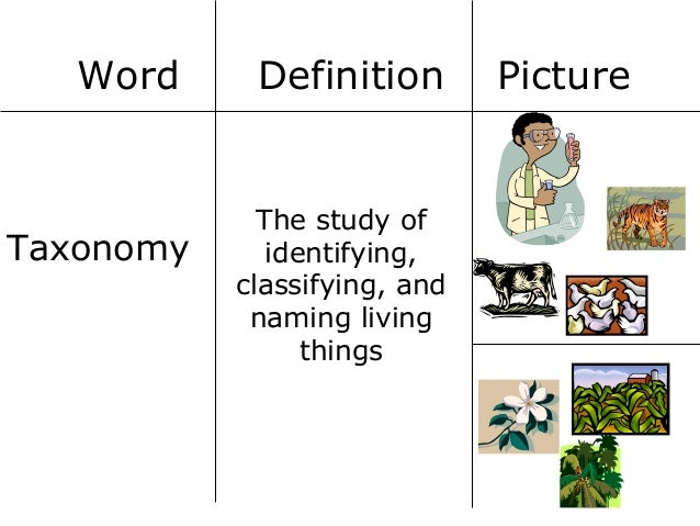 Why are scientific names used in scientific research?