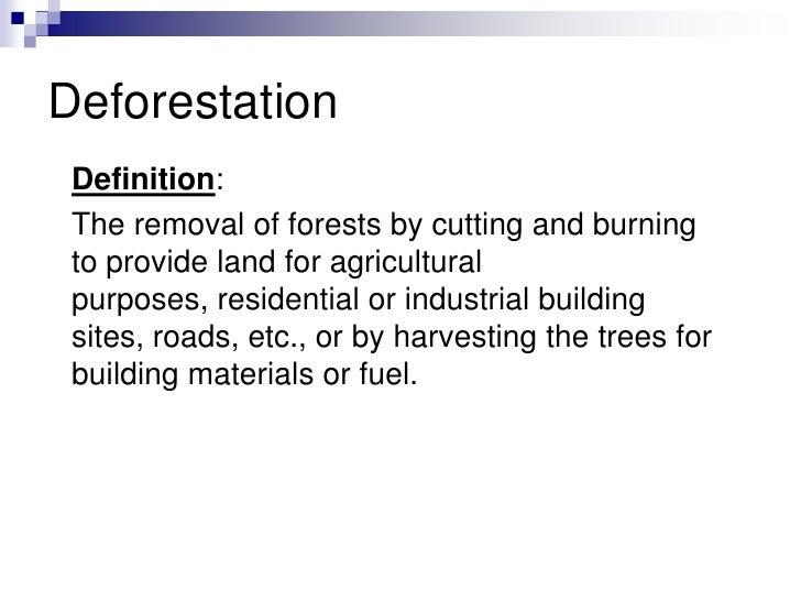 term paper definition