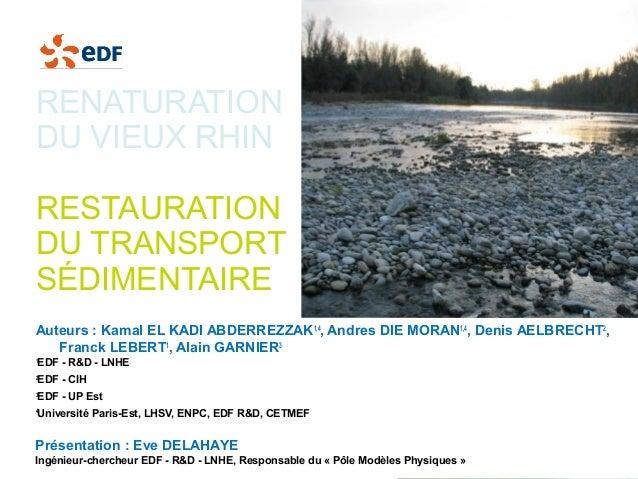 Renaturation du vieux Rhin - Illustations - EDF