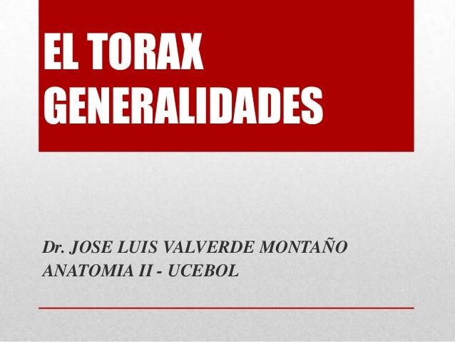 EL TORAX GENERALIDADES Dr. JOSE LUIS VALVERDE MONTAÑO ANATOMIA II - UCEBOL