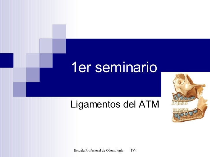 1er seminario Ligamentos del ATM