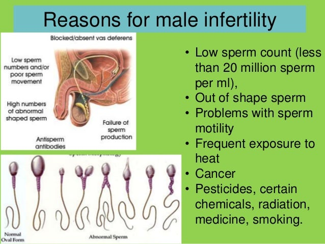 Read Patient Reviews on Dr Silber and the Infertility