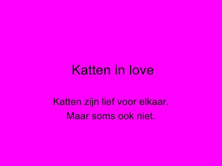 1g De Katten In Love