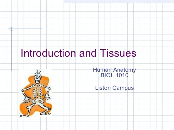 Introduction and Tissues              Human Anatomy                BIOL 1010               Liston Campus