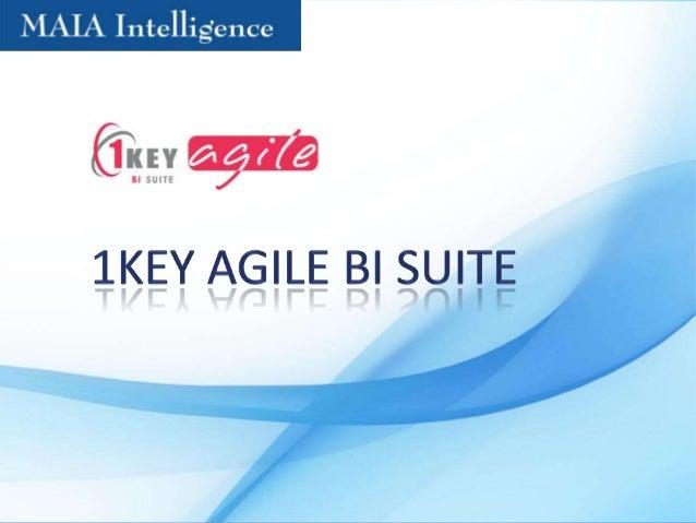 1 key Agile BI Suite
