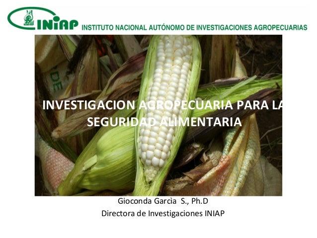 Gioconda Garcìa S., Ph.D Directora de Investigaciones INIAP INVESTIGACION AGROPECUARIA PARA LA SEGURIDAD ALIMENTARIA