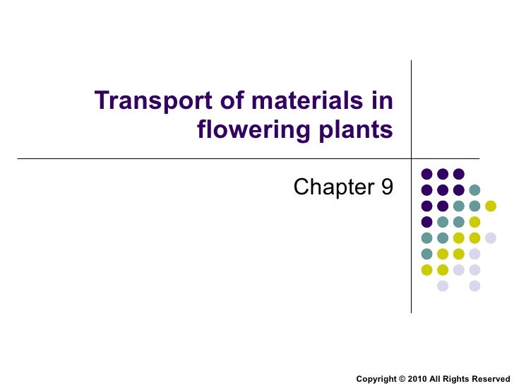 Transport of materials in flowering plants Chapter 9 Copyright © 2010 All Rights Reserved