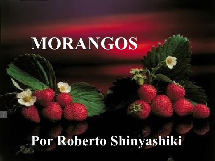 MORANGOSPor Roberto Shinyashiki