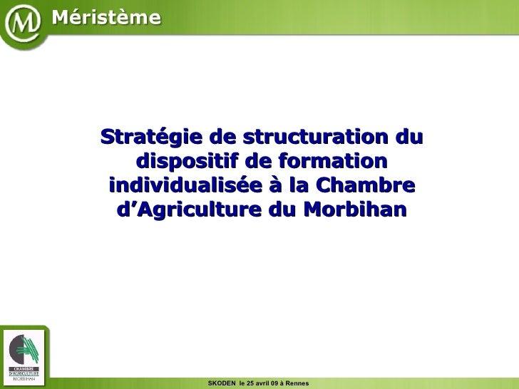 Stratégie de structuration du dispositif de formation individualisée à la Chambre d'Agriculture du Morbihan