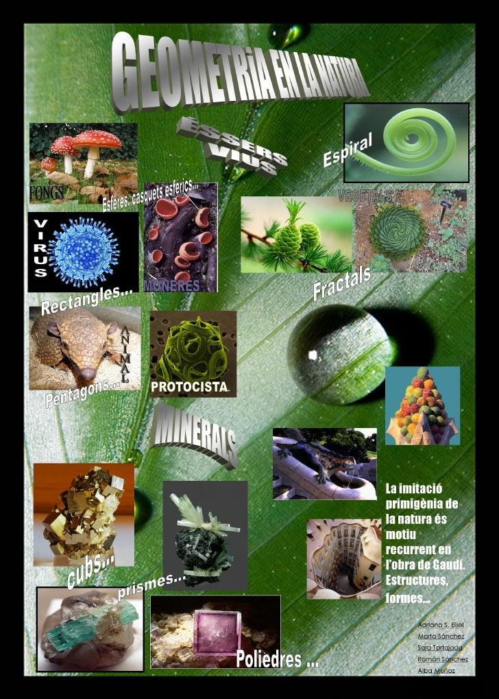 Geometria a la natura
