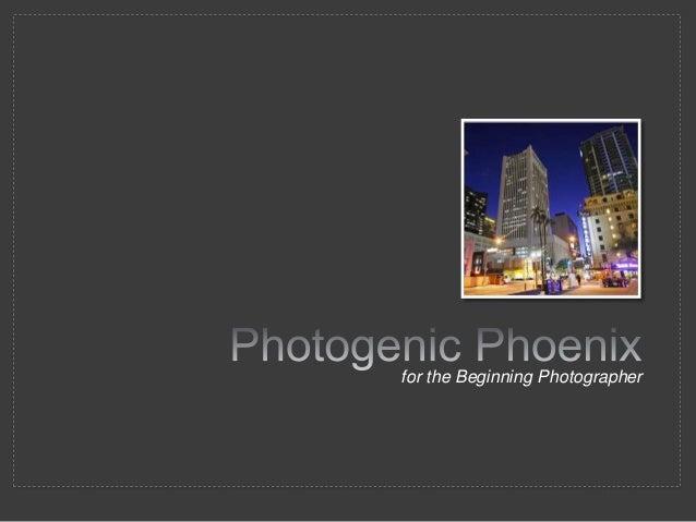 Photogenic phoenix for the beginning photographer