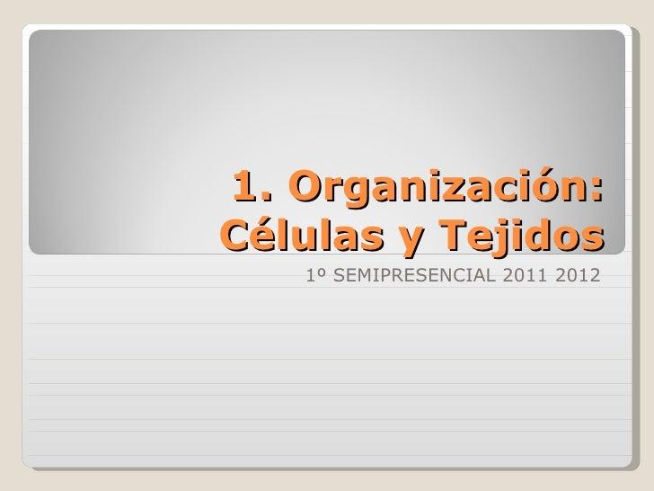 1. Organización: Células y Tejidos 1º SEMIPRESENCIAL 2011 2012