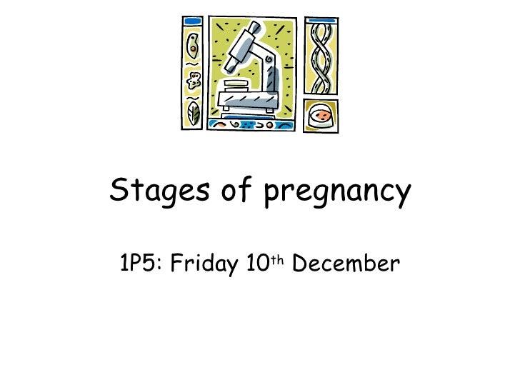 1 p5 pregnancy 101210