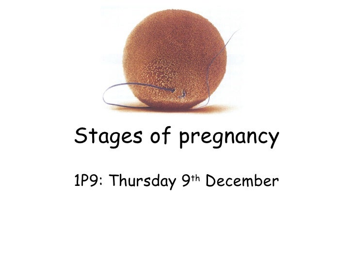Stages of pregnancy 1P9: Thursday 9 th  December