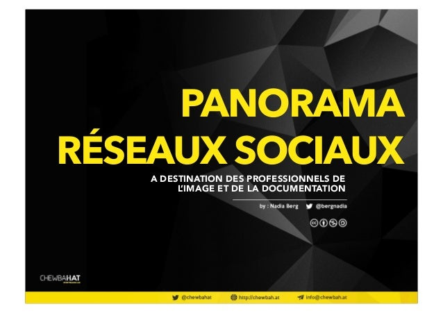 PANORAMA  RÉSEAUX SOCIAUX A DESTINATION DES PROFESSIONNELS DE  L'IMAGE ET DE LA DOCUMENTATION  @twitter