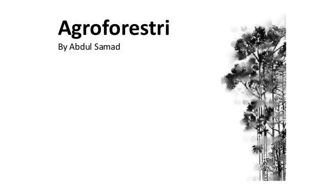 Agroforestri By Abdul Samad