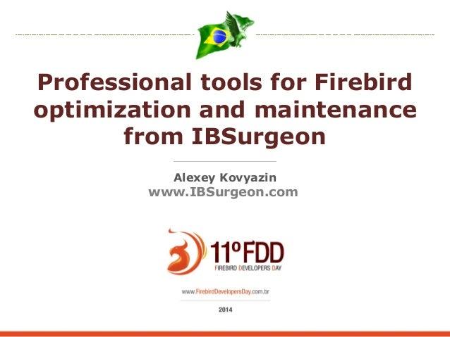 Professional tools for Firebird  optimization and maintenance  from IBSurgeon  Alexey Kovyazin  www.IBSurgeon.com