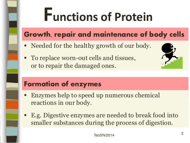 Sec 3 F Amp N Proteins Part 1 Nutrients And Health