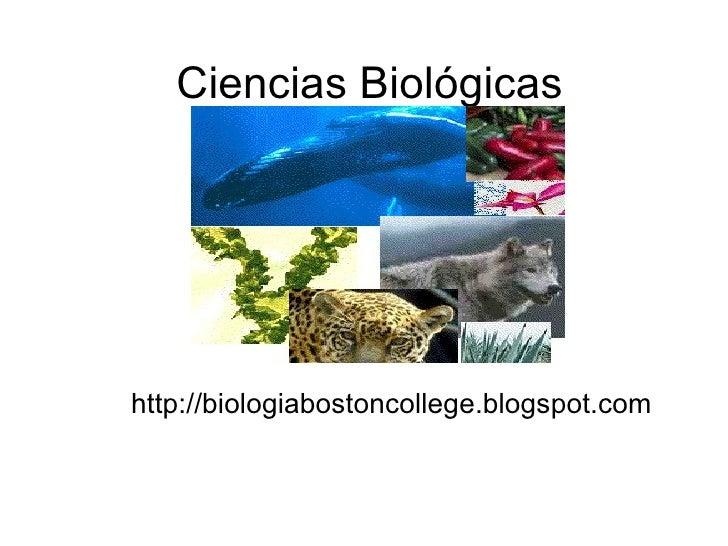 Ciencias Biológicas http://biologiabostoncollege.blogspot.com