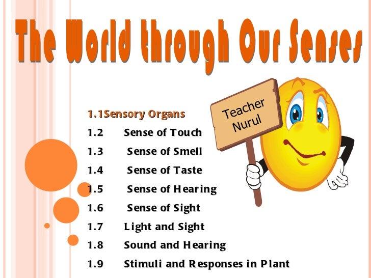 The World through Our Senses 1.1Sensory Organs 1.2 Sense of Touch 1.3  Sense of Smell 1.4  Sense of Taste 1.5  Sense of H...