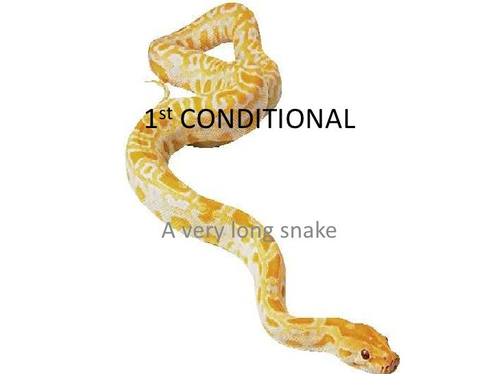 1st CONDITIONAL A very long snake