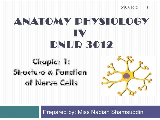 DNUR 3012   1ANATOMY PHYSIOLOGY        IV     DNUR 3012   Prepared by: Miss Nadiah Shamsuddin