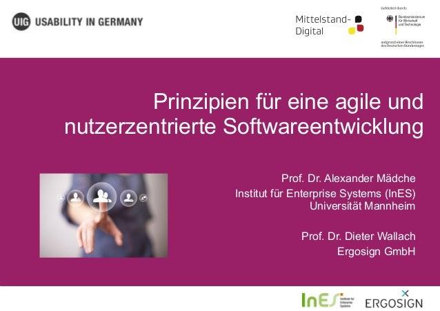 Prinzipien für eine agile und nutzerzentrierte Softwareentwicklung Prof. Dr. Alexander Mädche Institut für Enterprise Syst...