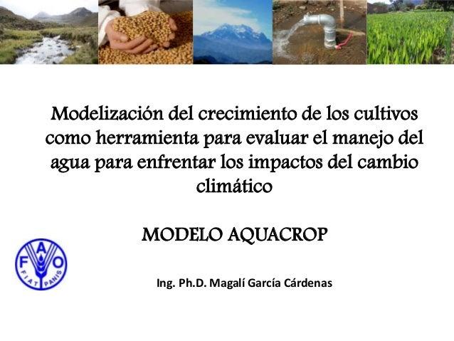 Modelo Aquacrop