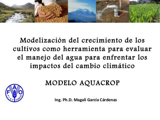Modelización del crecimiento de loscultivos como herramienta para evaluar el manejo del agua para enfrentar los     impact...