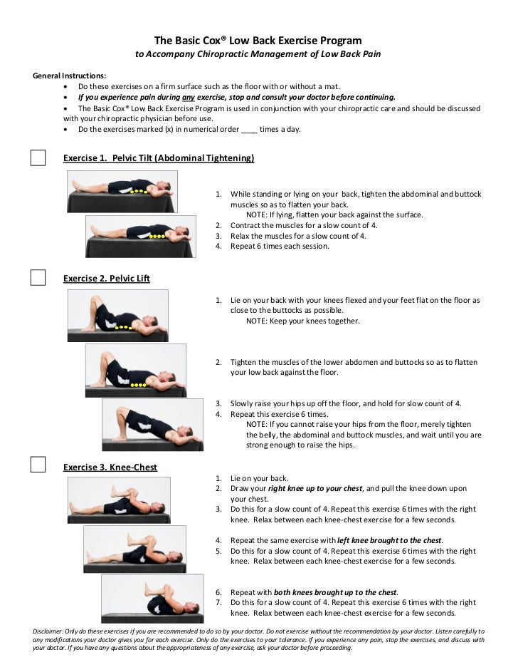 The Basic Cox® Low Back Exercise Program                                       to Accompany Chiropractic Management of Low...