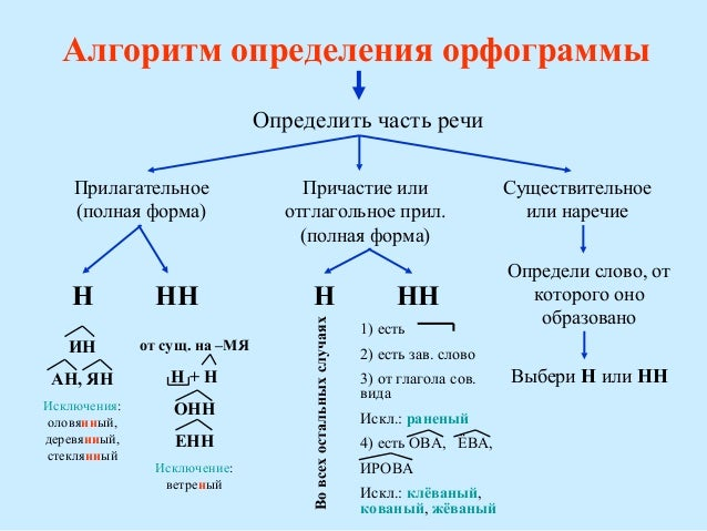 Правописание н и нн с разными частями речи