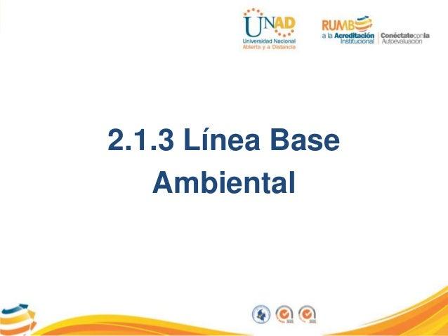2.1.3 Línea Base Ambiental