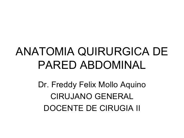 ANATOMIA QUIRURGICA DE PARED ABDOMINAL Dr. Freddy Felix Mollo Aquino CIRUJANO GENERAL DOCENTE DE CIRUGIA II
