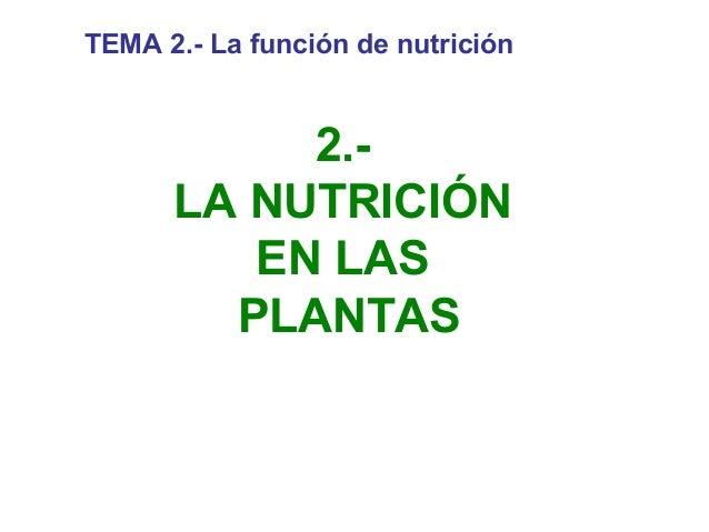 TEMA 2.- La función de nutrición  2.LA NUTRICIÓN EN LAS PLANTAS