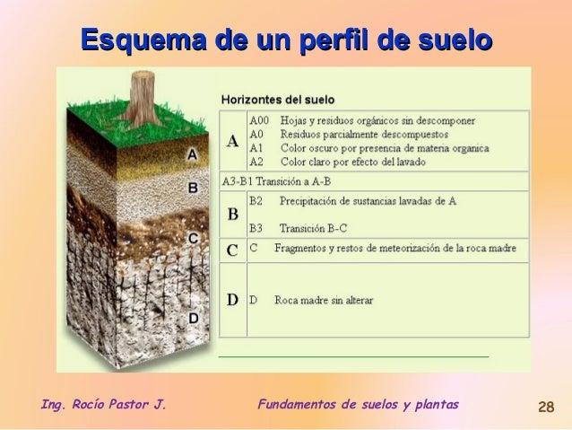 2 g nesis2 for Perfil del suelo wikipedia