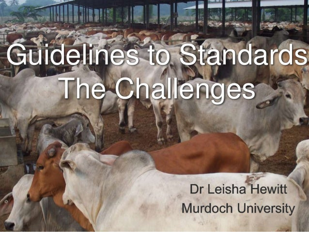 Guidelines to Standards The Challenges