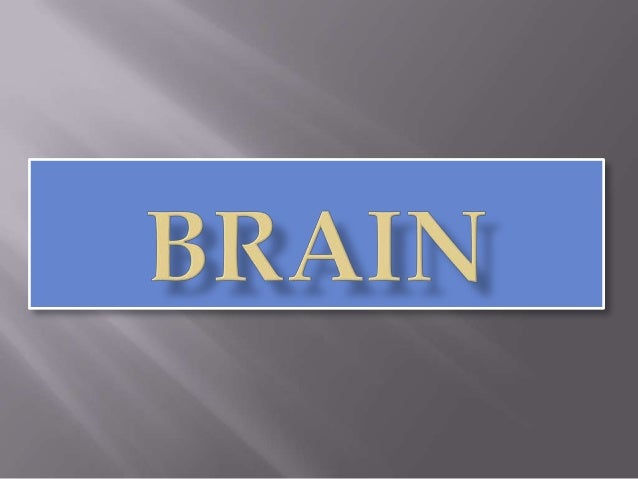        is the largest and upper part of C.N.S. 1360 gm The brain (encephalon) lies within the cranium The brain recei...
