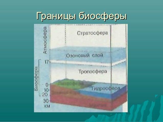 10. Границы биосферы