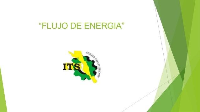 """""""FLUJO DE ENERGIA"""""""