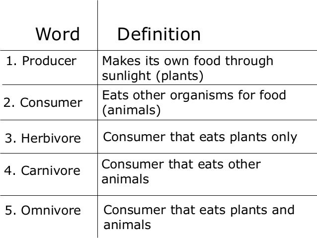 Word 1. Producer  Definition Makes its own food through sunlight (plants)  2. Consumer  Eats other organisms for food (ani...