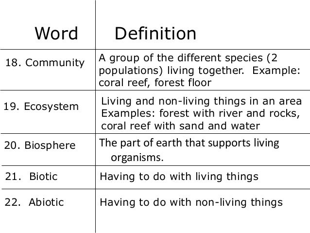 Vocabulary for Forest floor definition