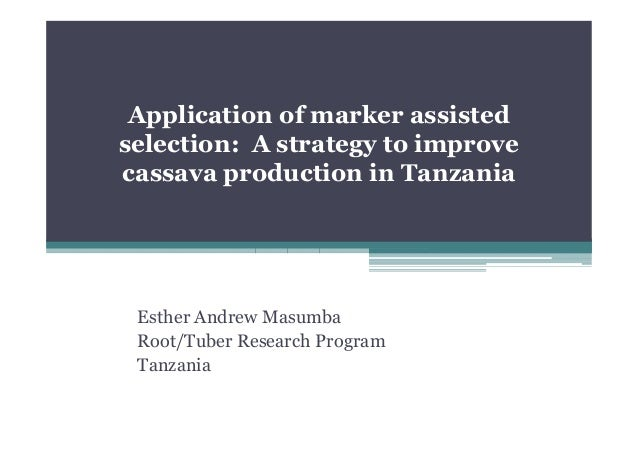 Application of marker assisted selection: A strategy to improve cassava production in Tanzania  Esther Andrew Masumba Root...