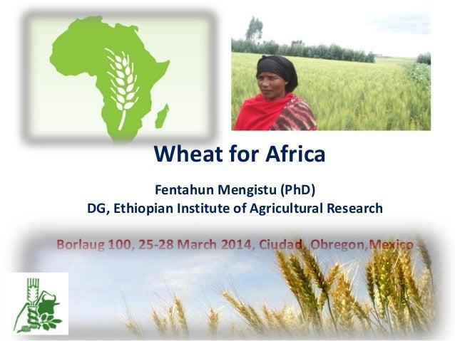 Wheat for Africa Fentahun Mengistu (PhD) DG, Ethiopian Institute of Agricultural Research Borlaug 100, 25-28 March 2014, C...