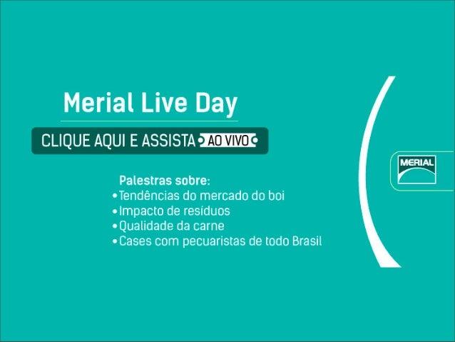 Merial Live Day - Miguel Cavalcanti