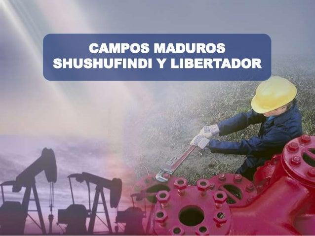 CAMPOS MADUROS SHUSHUFINDI Y LIBERTADOR