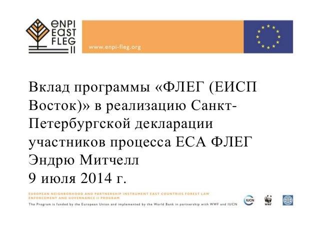 Вклад программы «ФЛЕГ (ЕИСП Восток)» в реализацию Санкт- Петербургской декларации участников процесса ЕСА ФЛЕГ Эндрю Митче...
