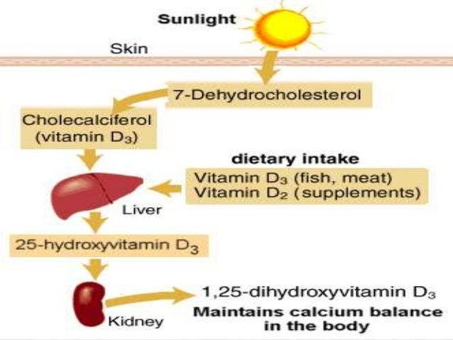 Vitamin Dmetabolism